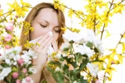 Аллергия как причина ринита