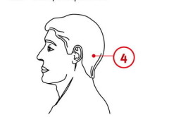 Схема представленного массажа при гайморите