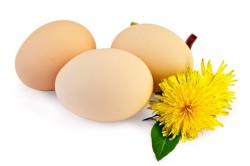 Вареные яйца для прогревания носа при заложенности