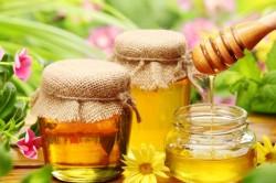 Лечение гайморита с использованием майского меда