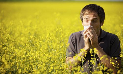 аллергический ринит лекарственные препараты